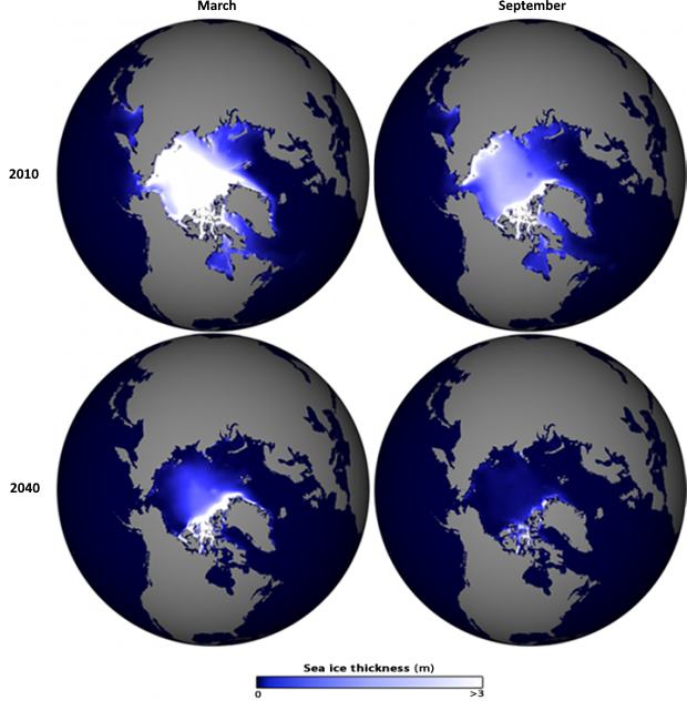 Arctic sea ice loss projection